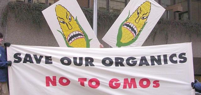 GMO_organics_action_jan2004_0