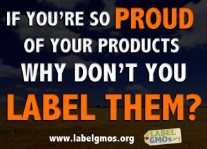 labelling of genetically modified food